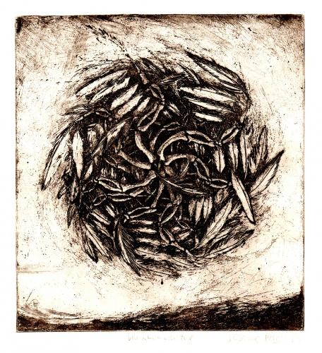 Bemalter Vogel, Knochenwalzer